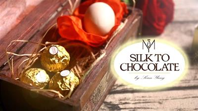 Silk to Chocolate (Ferrero Rocher) by Sean Yang