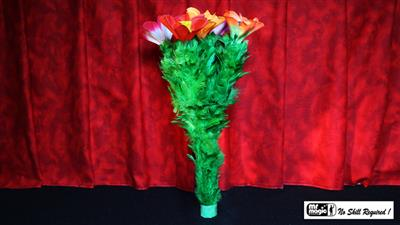 Classic Blooming Bouquet Double (5) by Mr. Magic - Trick