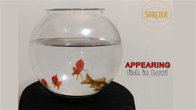 APPEARING FISH IN BOWL by Sorcier Magic
