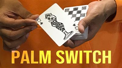 Magic Encarta Presents Palm Switch & Palm Control by Vivek Singhi