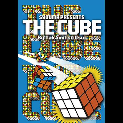 The Cube by Takamitsu Usui - DVD
