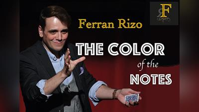 The Color of the Notes by Ferran Rizo video DOWNLOAD